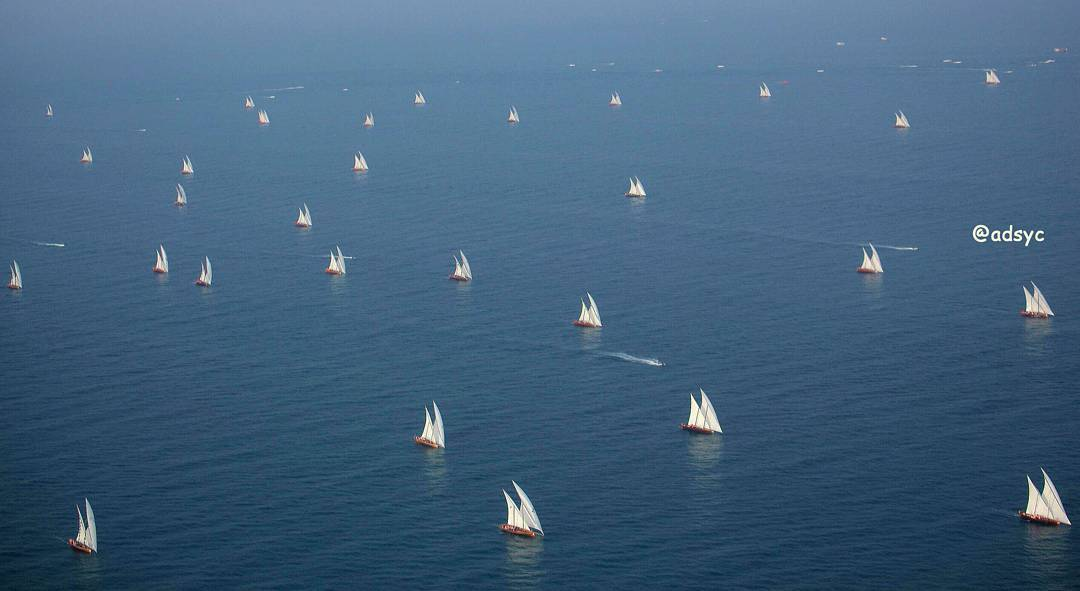 Abu ALAbyad Dhow Sailing Race 60ft